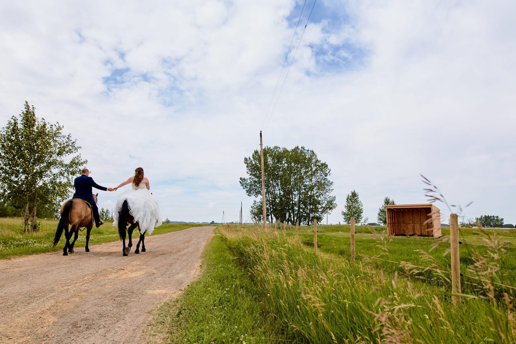 Wedding Photography barn horse country rustic alberta